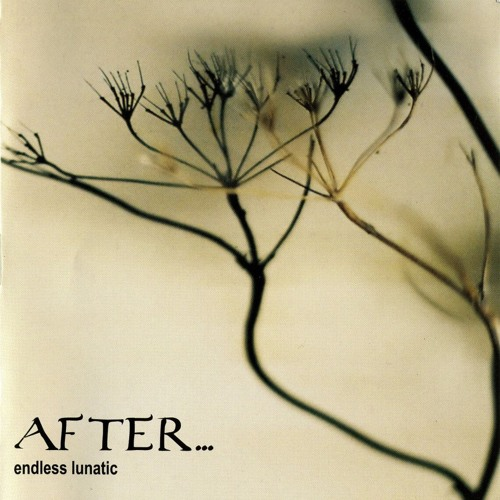 After... — Endless Lunatic