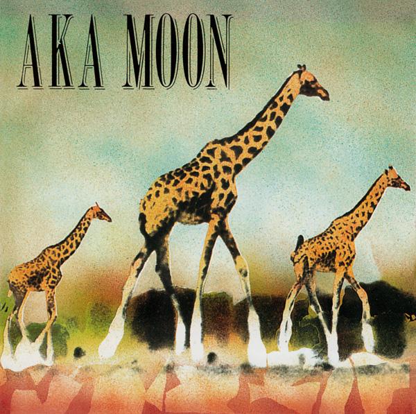 Aka Moon — Aka Moon