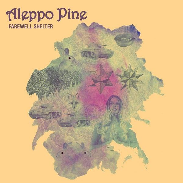 Aleppo Pine — Farewell Shelter