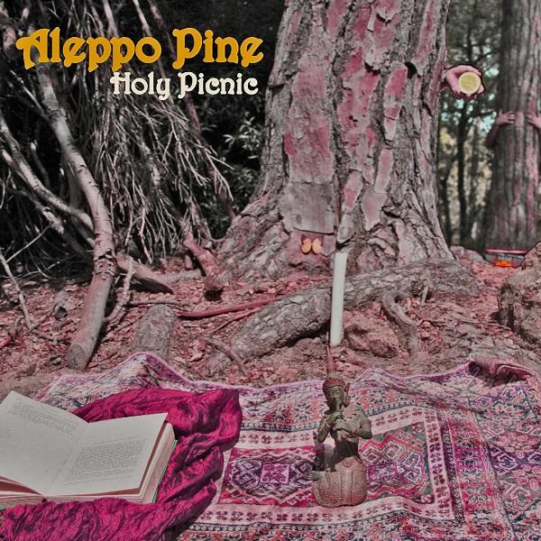 Aleppo Pine — Holy Picnic