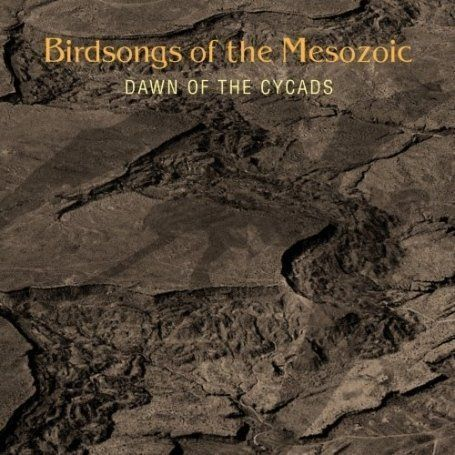 Birdsongs of the Mesozoic — Dawn of the Cycads