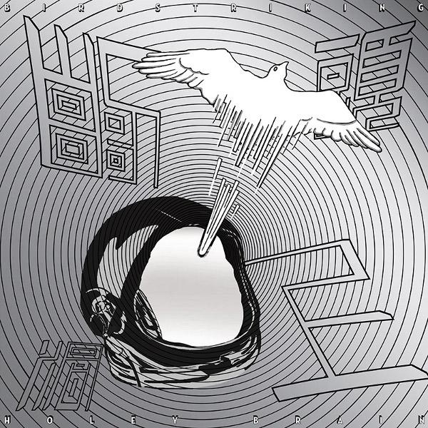 Birdstriking — Holey Brain