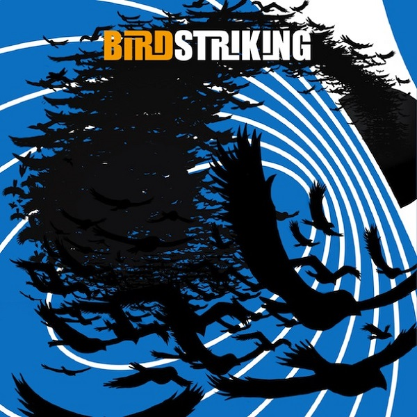 Birdstriking — Birdstriking