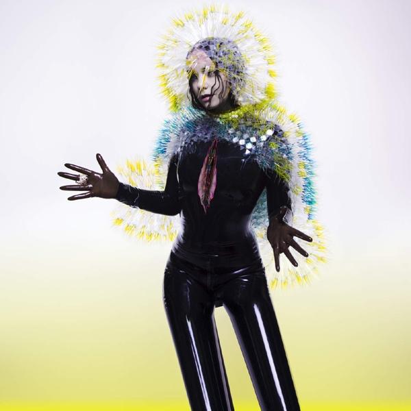 Björk — Vulnicura
