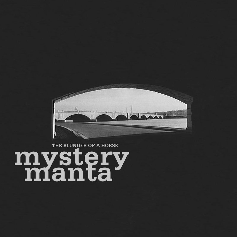 The Blunder of a Horse — Mystery Manta