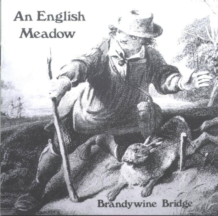An English Meadow Cover art