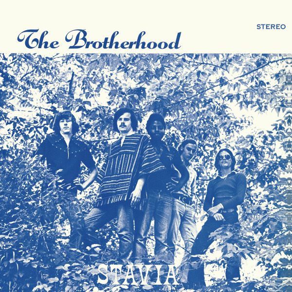 The Brotherhood — Stavia
