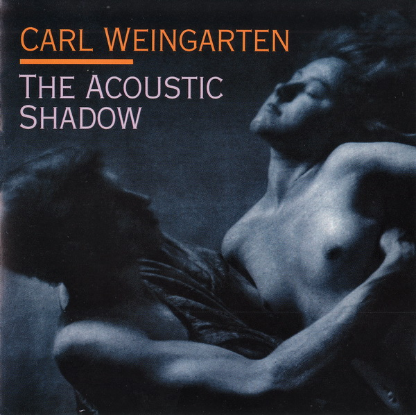 The Acoustic Shadow Cover art