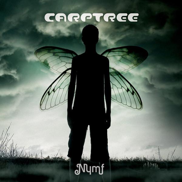 Carptree — Nymf