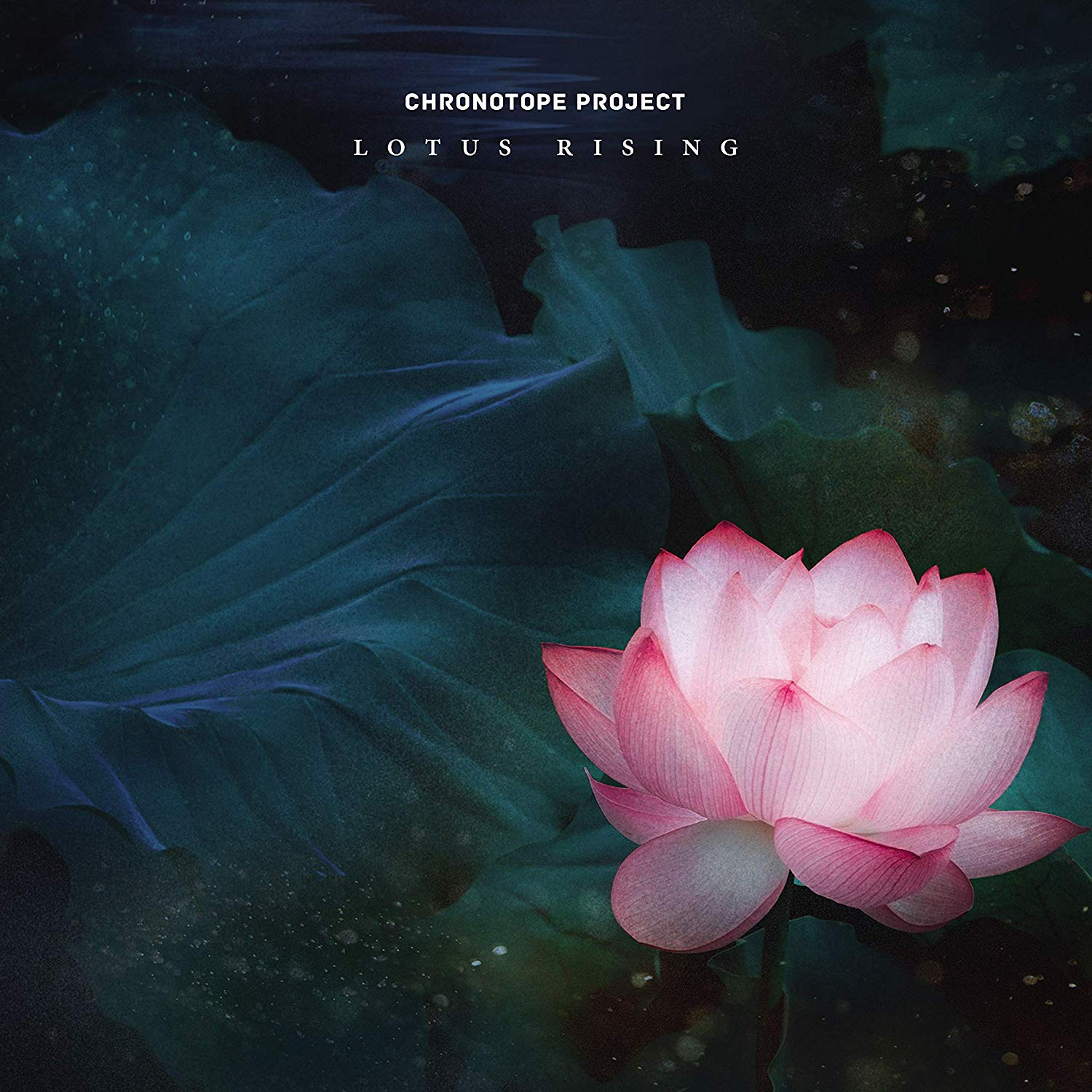 Chronotope Project — Lotus Rising
