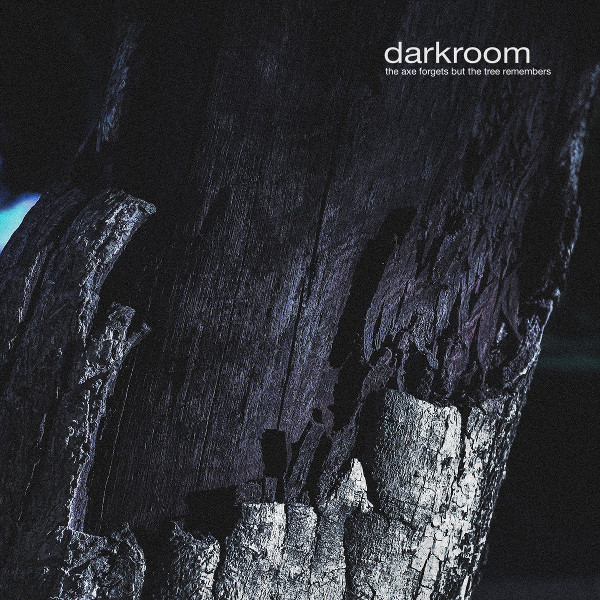 Darkroom — The Axe Forgets but the Tree Remembers
