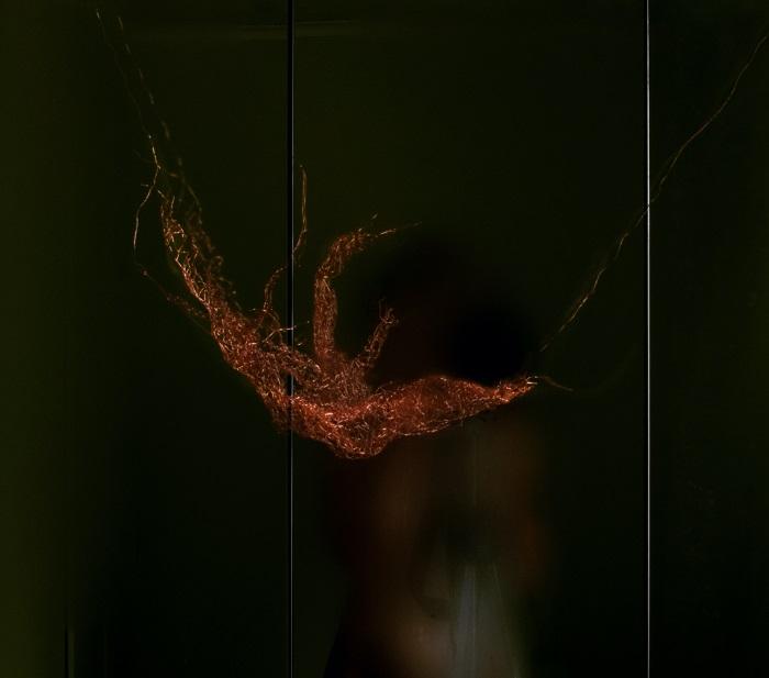 David Bird — Mirrors