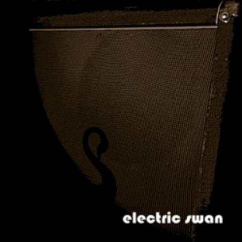 Electric Swan — Electric Swan