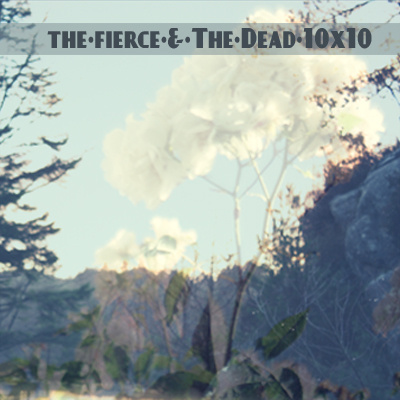 The Fierce and the Dead — 10x10