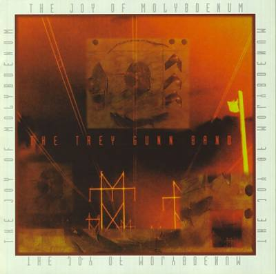 The Trey Gunn Band — The Joy of Molybdenum
