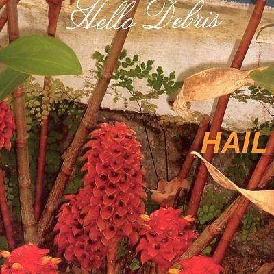 Hail — Hello Debris