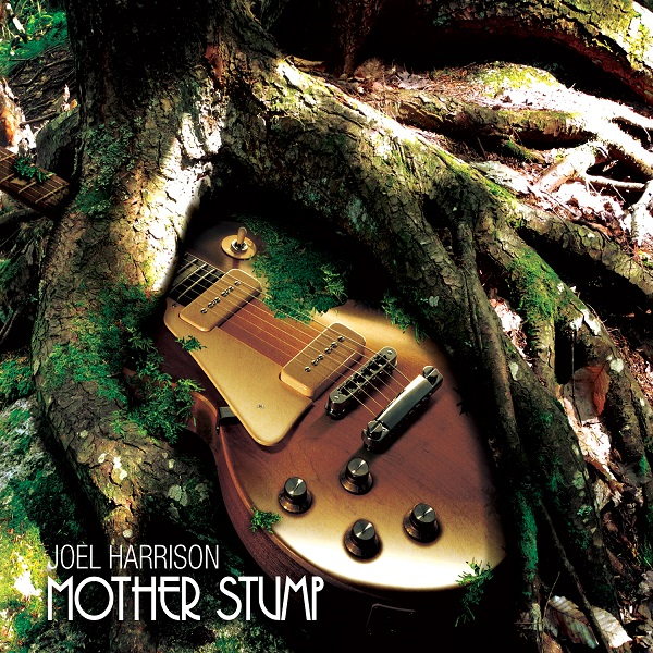 Joel Harrison — Mother Stump