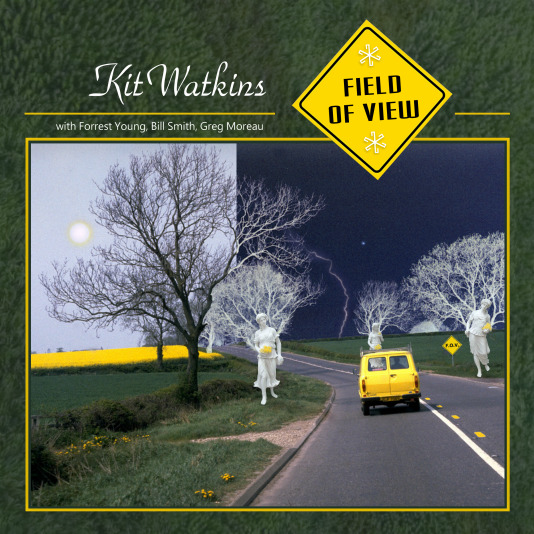 Field of View Cover art