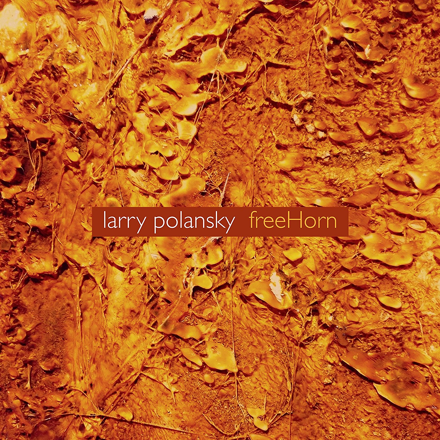 Larry Polansky — FreeHorn