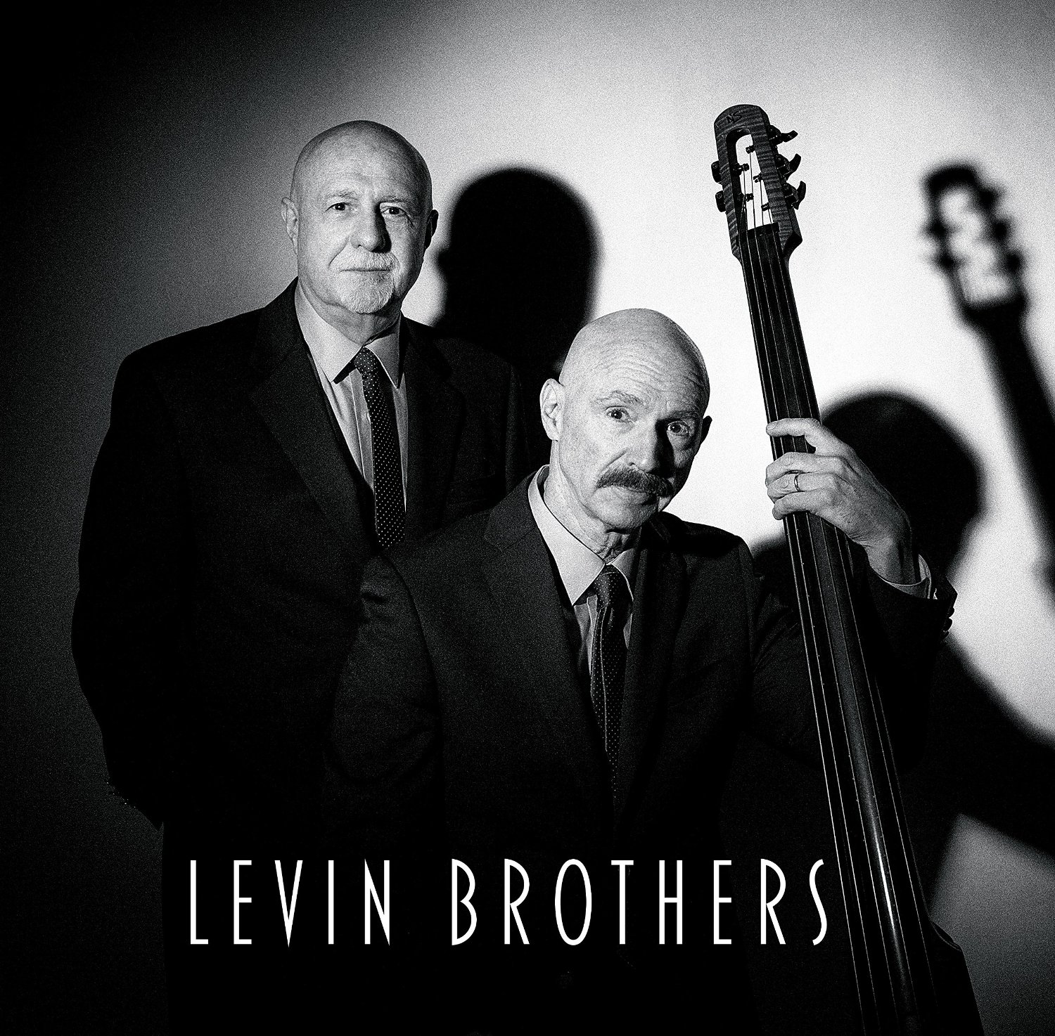 Levin Brothers — Levin Brothers