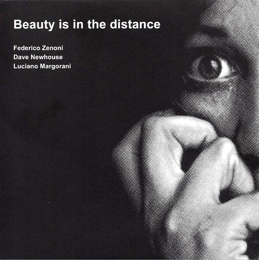 Beauty Is in the Distance Cover art