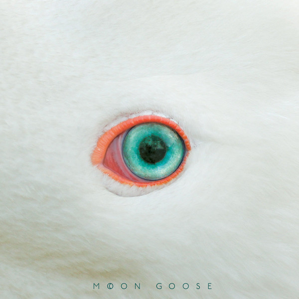 Moon Goose — Source Code