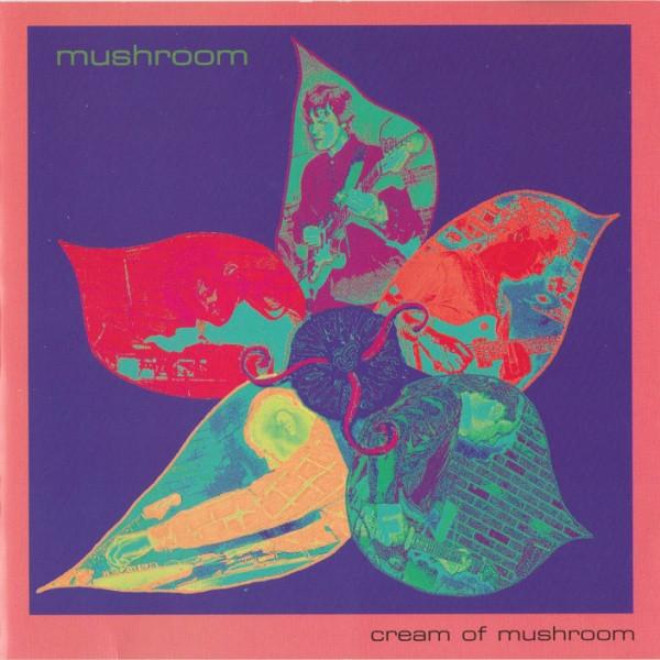 Mushroom — Cream of Mushroom