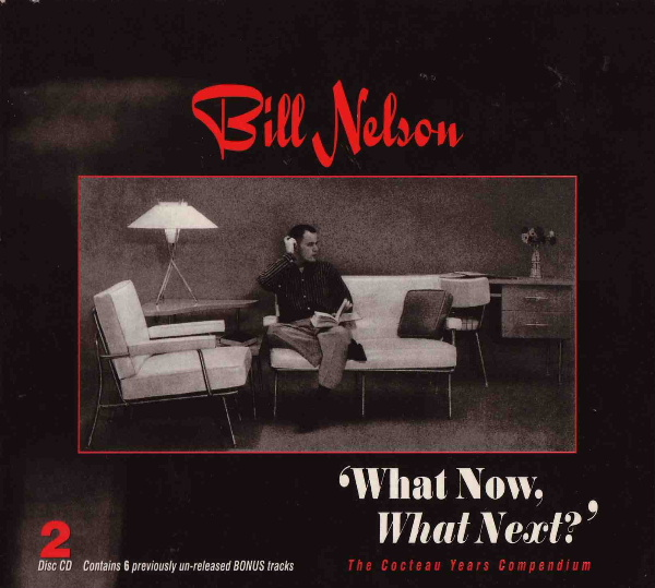 Bill Nelson — What Now, What Next