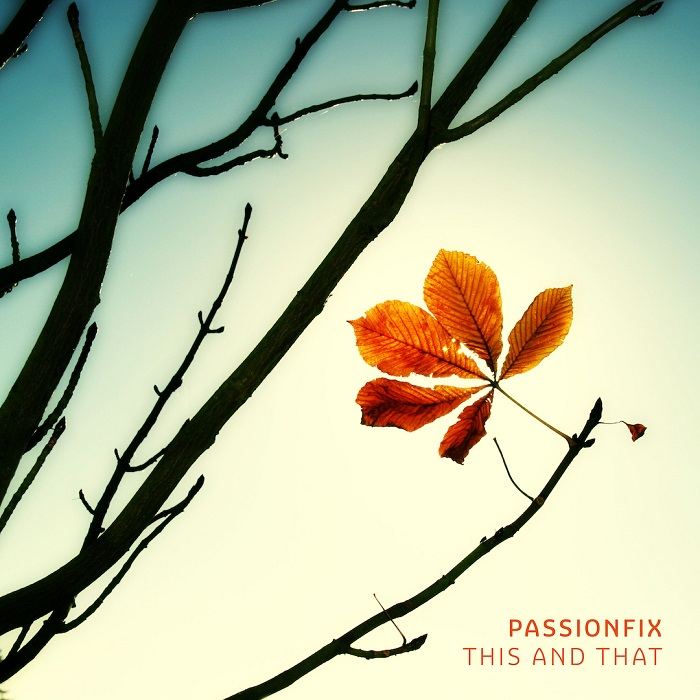 Passionfix — This and That