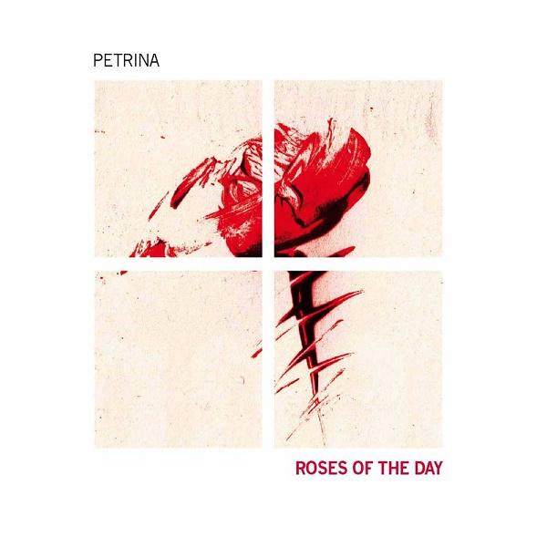 Petrina — Roses of the Day