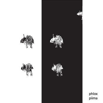 Phlox — Piima