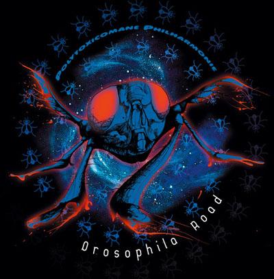 Polytoxicomane Philharmonie — Drosophila Road