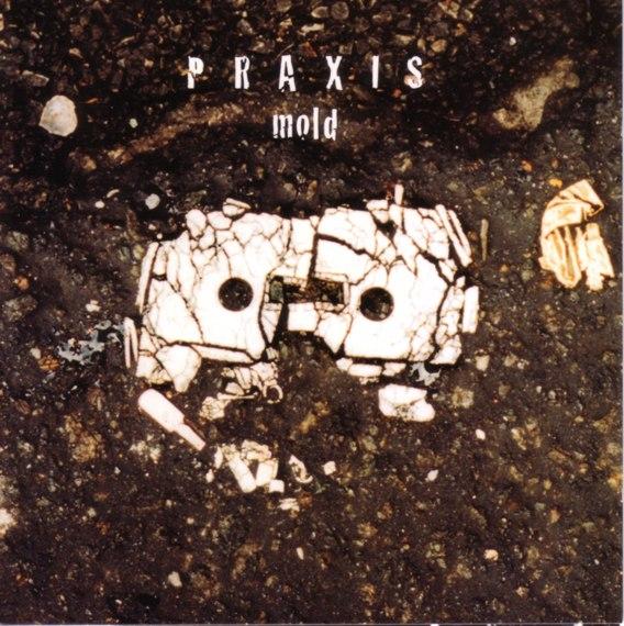 Praxis — Mold
