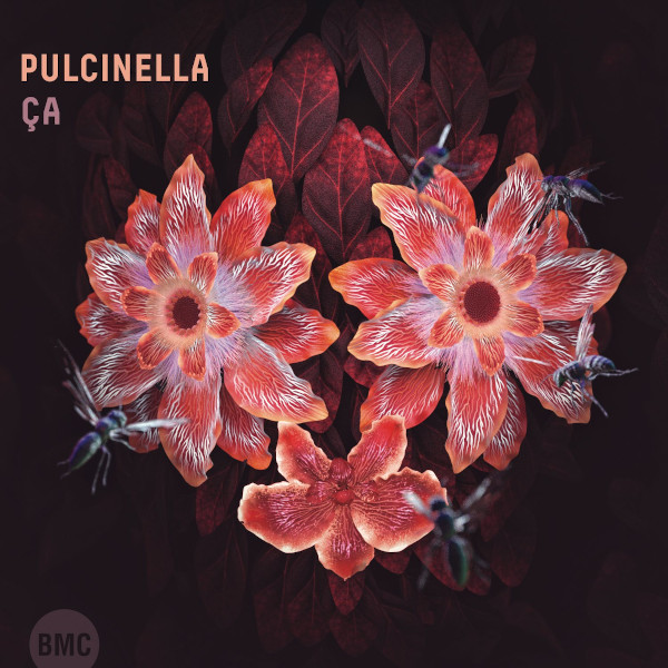 Pulcinella — Ça