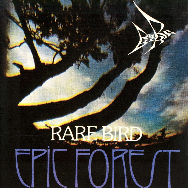 Rare Bird — Epic Forest