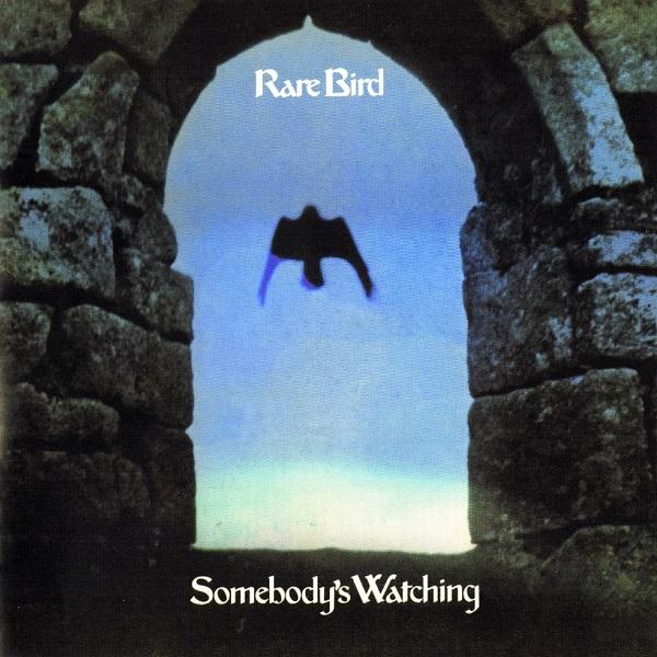 Rare Bird — Somebody's Watching