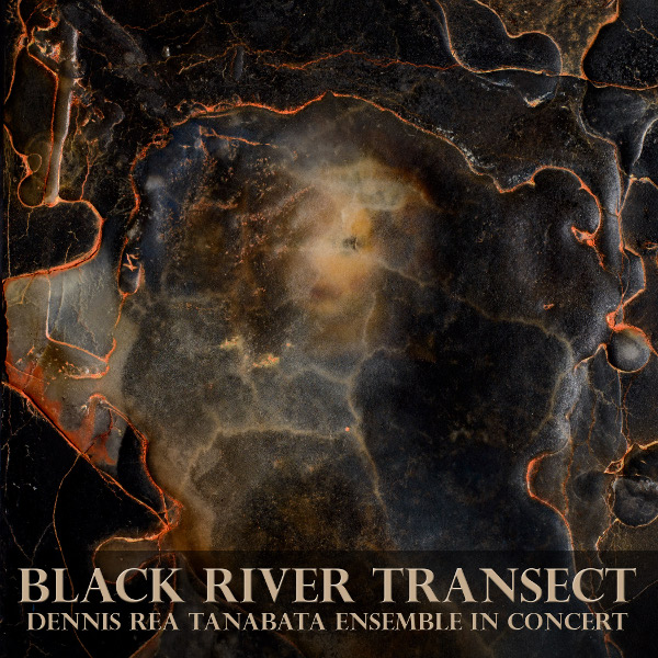 Black River Transect Cover art