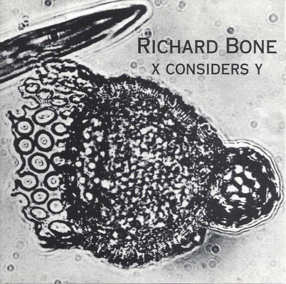 Richard Bone — X Considers Y