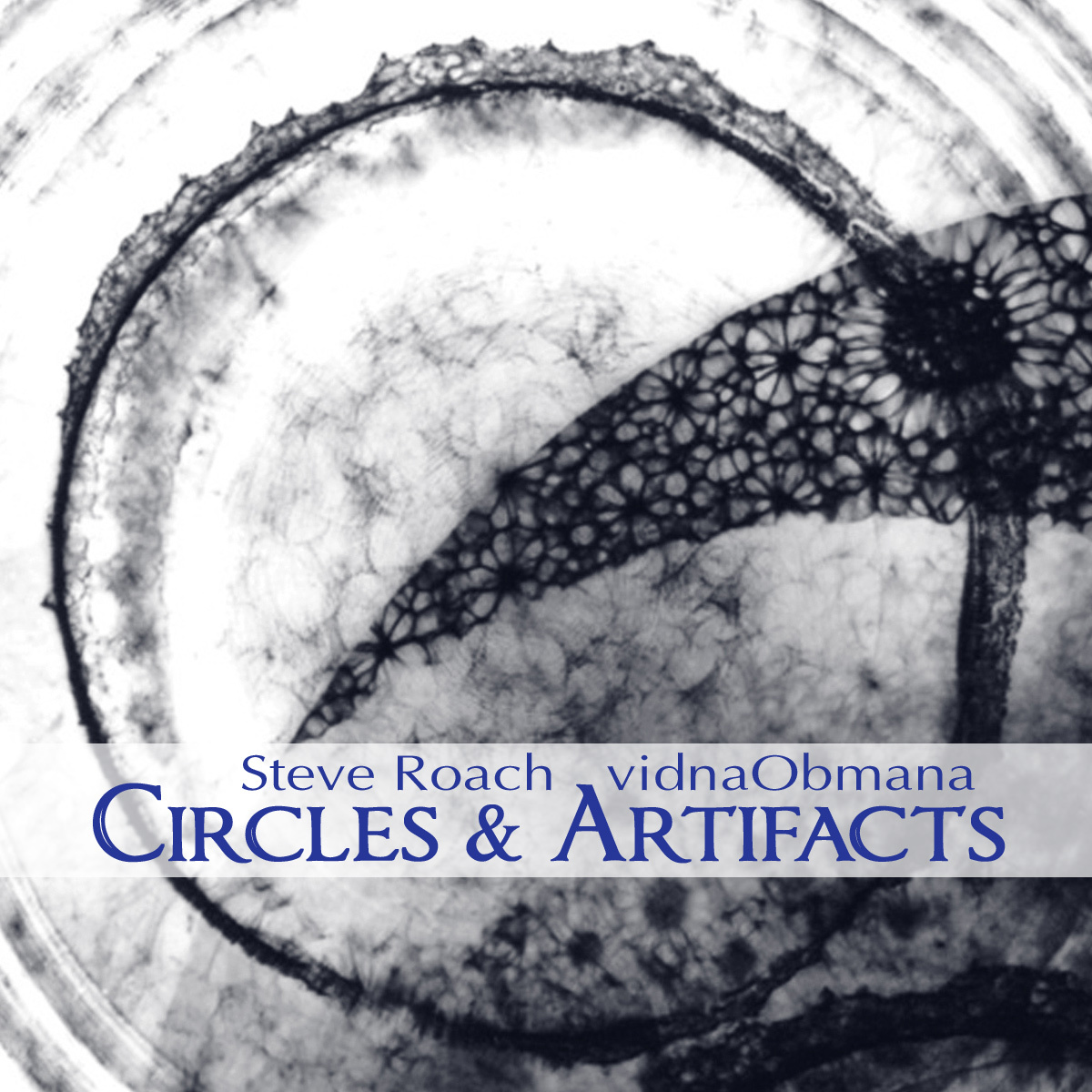 Steve Roach / vidnaObmana — Circles & Artifacts