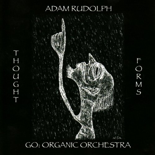 Adam Rudolph / Go: Organic Orchestra — Thought Forms