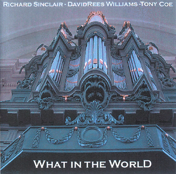 Richard Sinclair / David Rees Williams / Tony Coe — What in the World