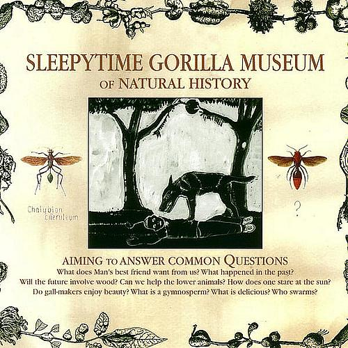 Sleepytime Gorilla Museum — Of Natural History