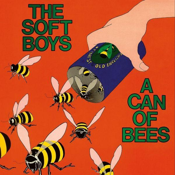 The Soft Boys — A Can of Bees