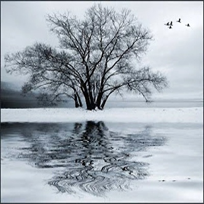 Sonus Umbra — Winter Soulstice