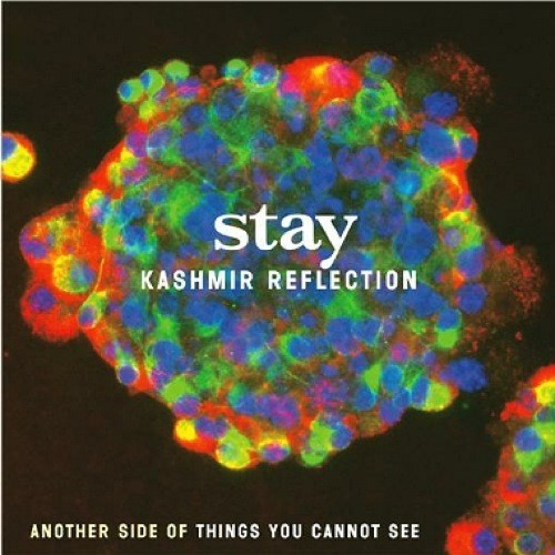 Stay — Kashmir Reflection: Another Side of Things You Cannot See
