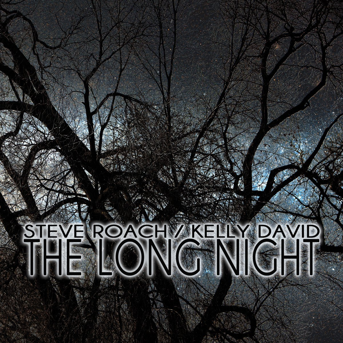 Steve Roach / Kelly David — The Long Night