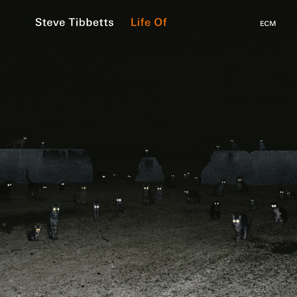 Steve Tibbetts — Life Of