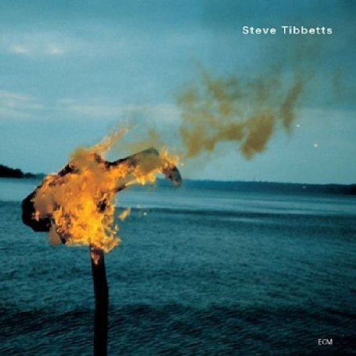 Steve Tibbetts — A Man about a Horse