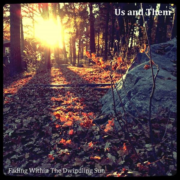 Fading within the Dwindling Sun Cover art