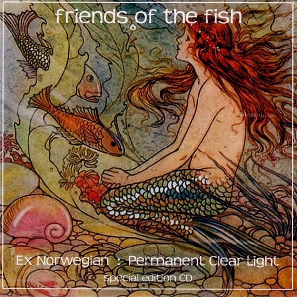 Ex Norwegian / Permanent Clear Light — Friends of the Fish (America Meets Finland)